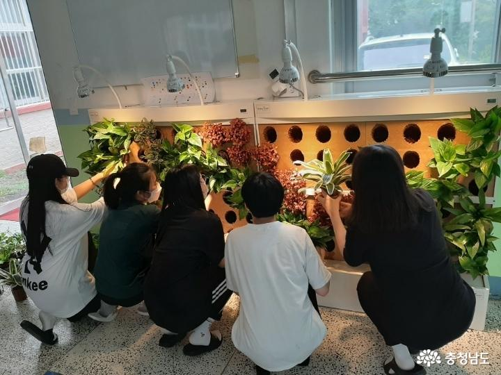 당진중학교에 식물공기청정기 바이오월이 설치되었어요 8