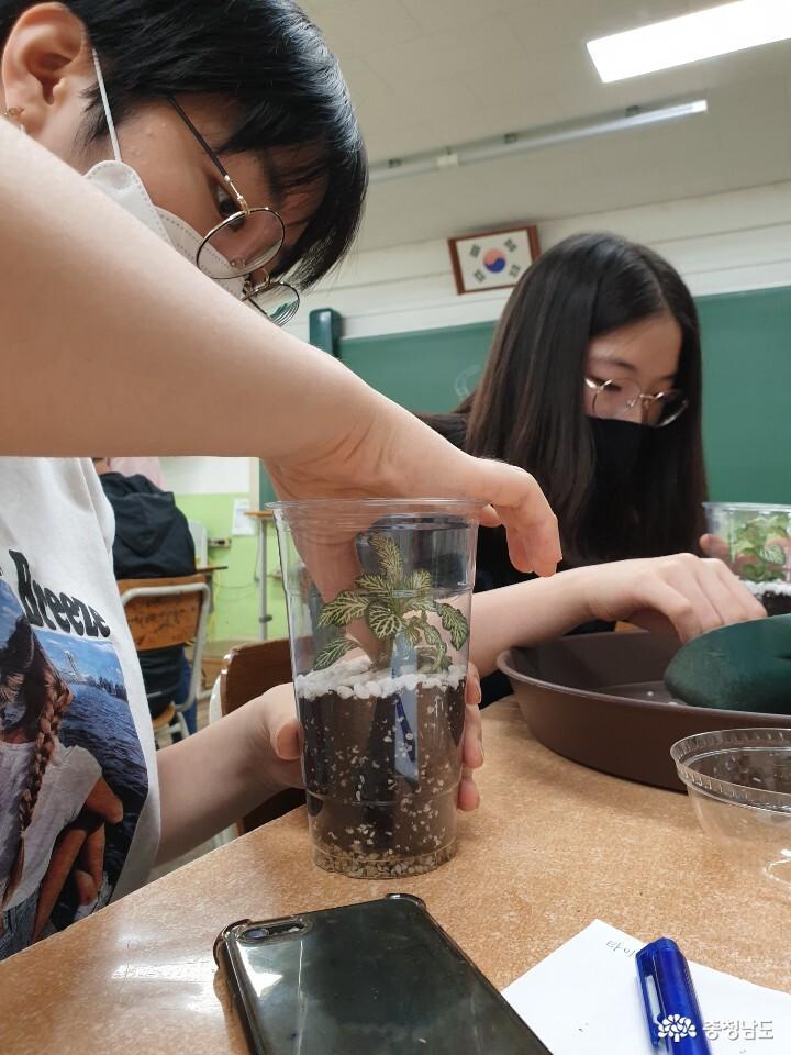 당진중학교에 식물공기청정기 바이오월이 설치되었어요 13