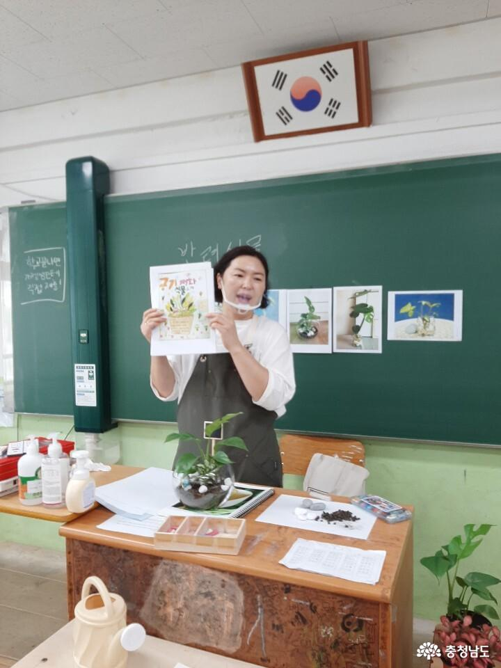 당진중학교에 식물공기청정기 바이오월이 설치되었어요 16