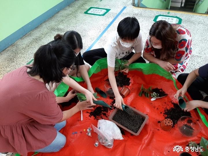 당진중학교에 식물공기청정기 바이오월이 설치되었어요 17