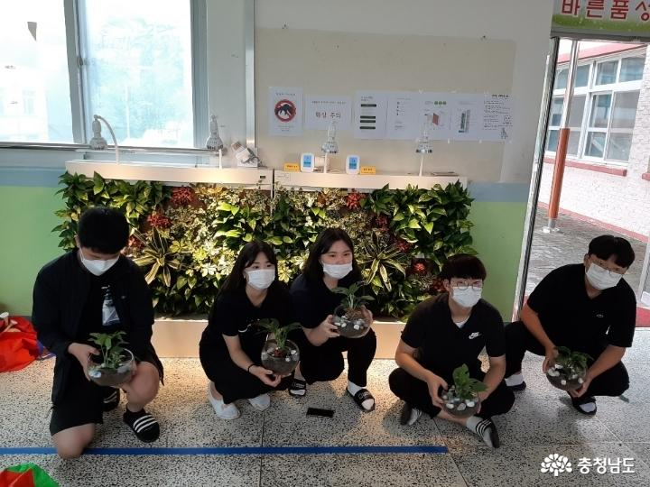 당진중학교에 식물공기청정기 바이오월이 설치되었어요 사진