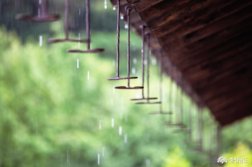 8월 여행 추천지, 배롱나무꽃 만개한 종학당
