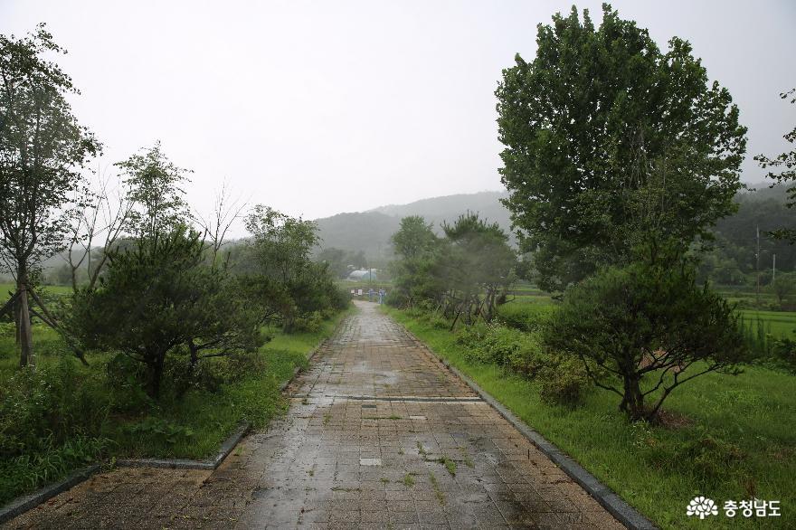 산수가 아름다운 가곡2리 회춘약수터마을의 비오는 날 사진