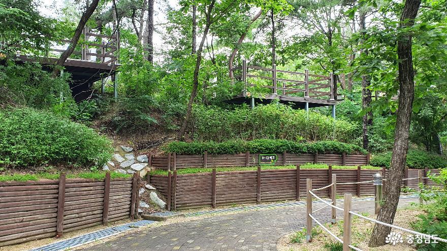 영인산 자연휴양림 캠핑장 A지구로 가는 숲길1.