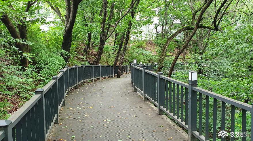 영인산 자연휴양림 캠핑장 A지구로 가는 숲길 2.