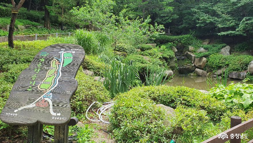 영인산 자연휴양림 수목원. 캠핑장과 이어져 있다.
