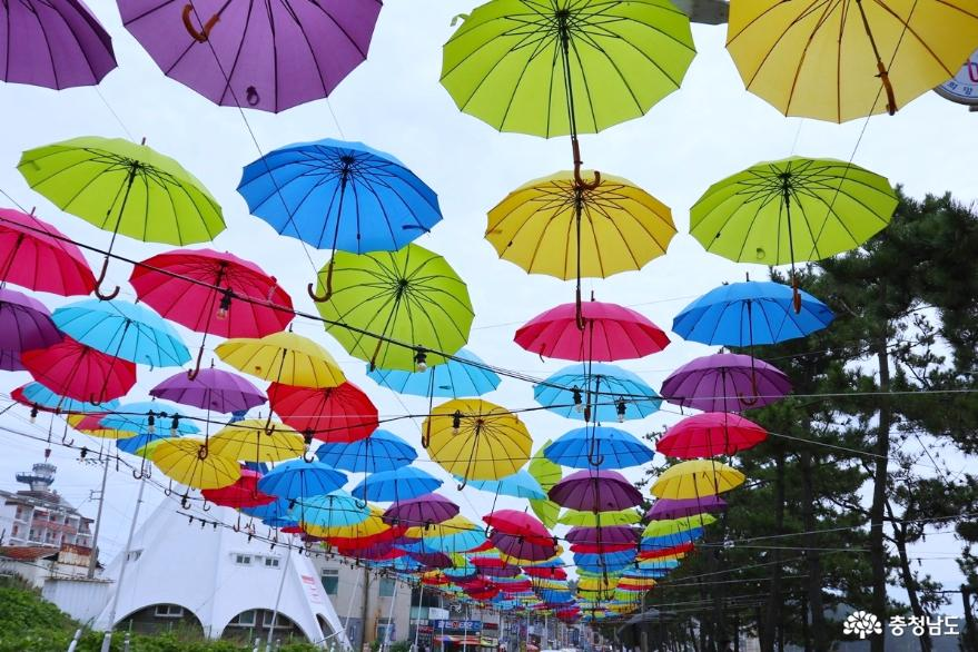 워터스크린으로 즐길 수 있는 만리포 사랑 사진