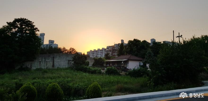 충남 홍성군 홍성읍