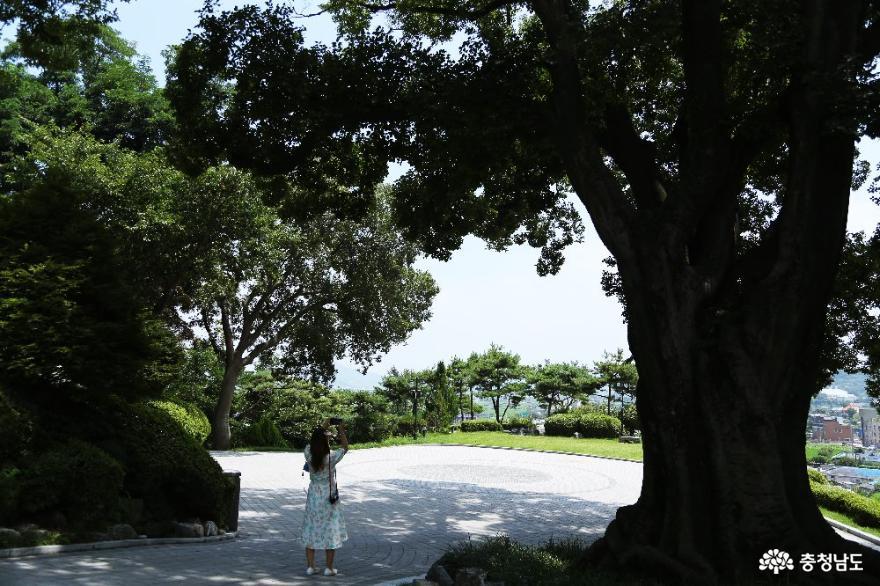 130년 역사를 지닌 아산 공세리성당의 아름다움 사진