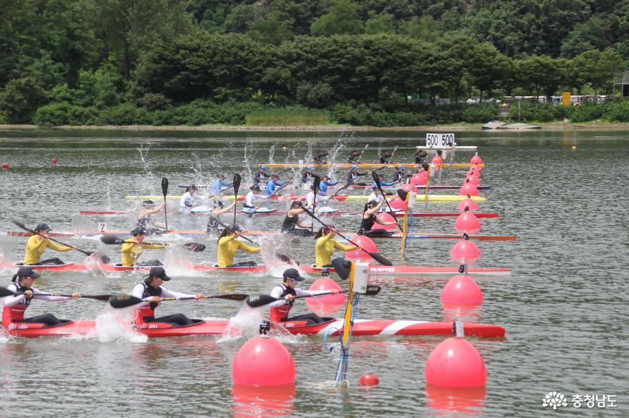 [사진보도] 제16회 백마강배 전국카누경기대회 4일간 열전 돌입