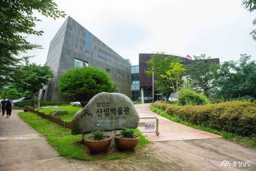 산림문화의 현장학습장 아산 영인산 산림박물관