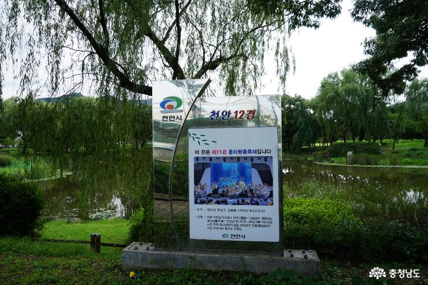뛰어난 경치를 자랑하는 여름날의 천안삼거리공원