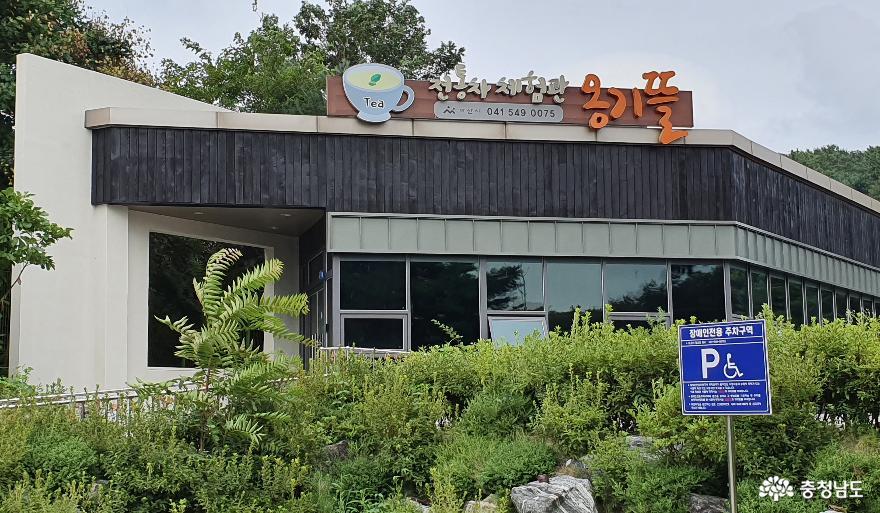 아산 옹기발효음식전시체험관 전통차