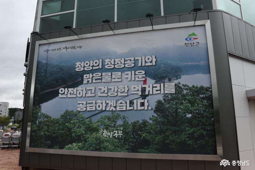 대전에 문을 연 청양의 로컬마켓 햇살농부