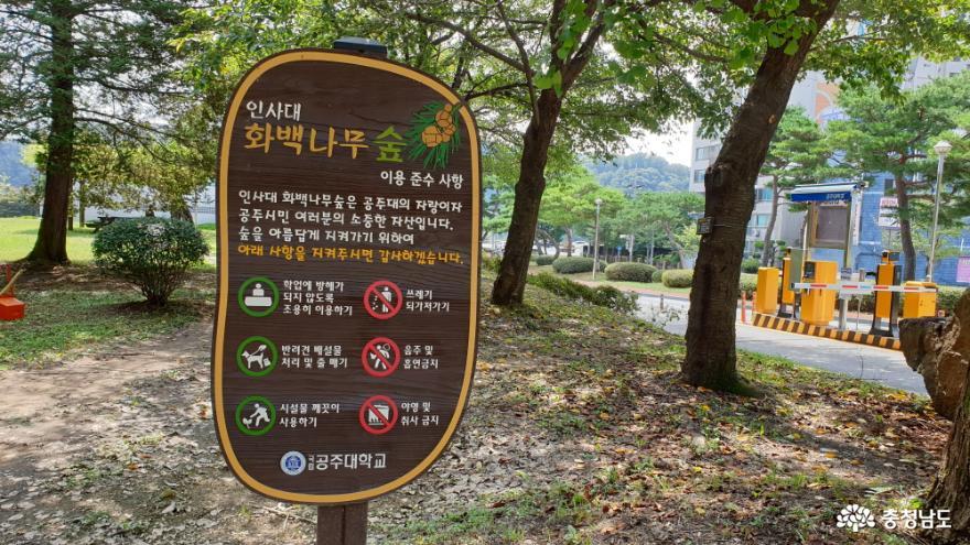 화백나무 숲 이용 준수사항