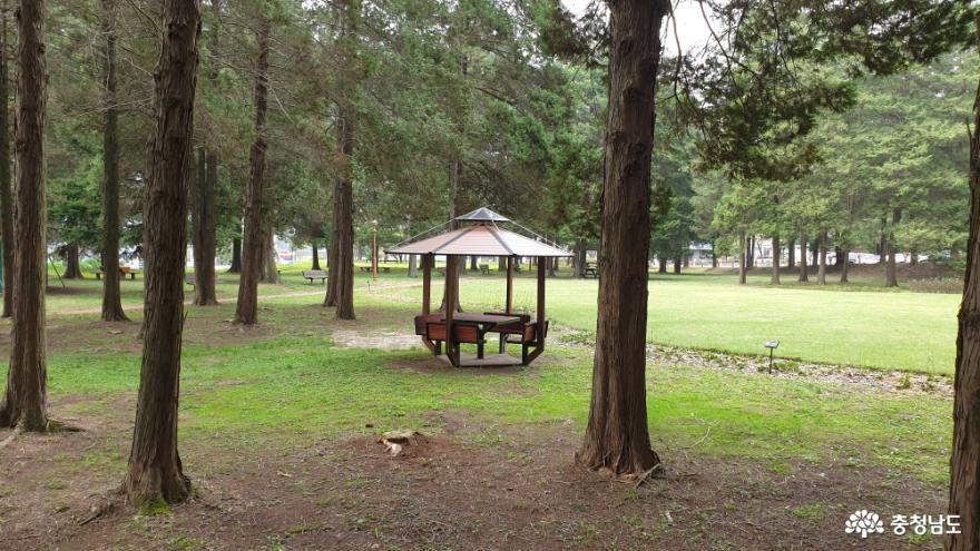 화백나무 숲 편의 시설