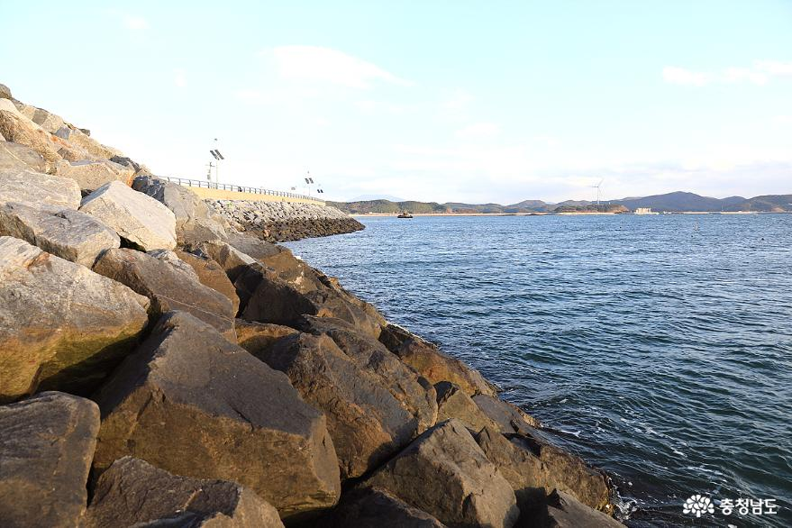 올 가을에도 충남 서해안 전어 대박 화이팅 1