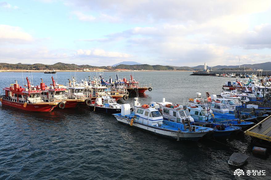 올 가을에도 충남 서해안 전어 대박 화이팅 2