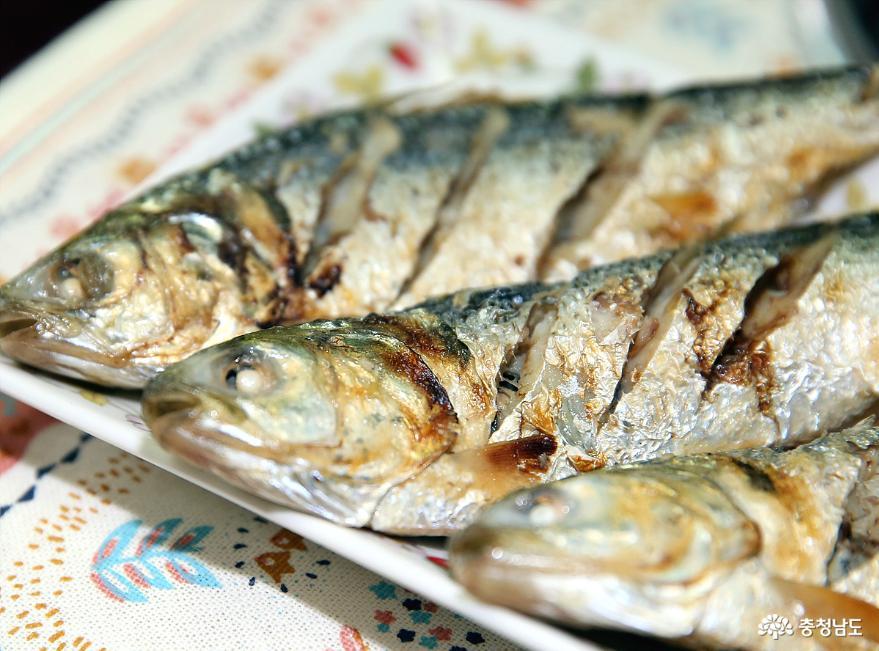 올 가을에도 충남 서해안 전어 대박 화이팅 12