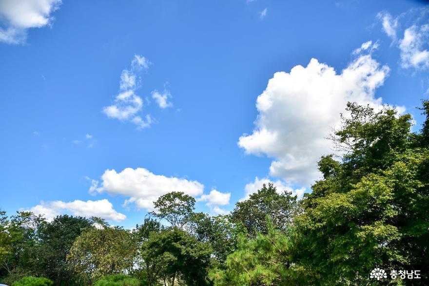 하늘 푸른 날 배방산 걷기