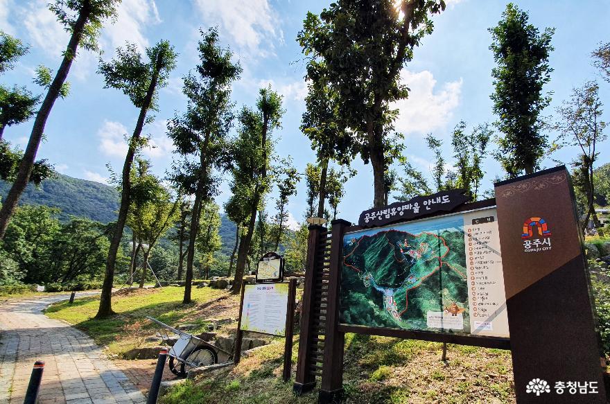 자연을 만끽하는 공주산림휴양마을