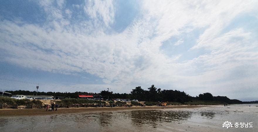 갯벌체험 강력 추천 달산포해수욕장
