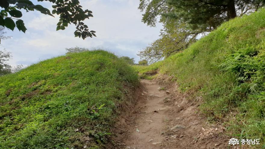 영동루 오르는 산길
