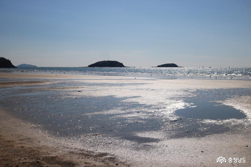 금빛 모래 은빛 물결 반짝이는 독산해수욕장