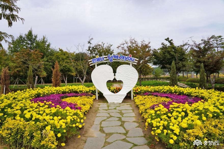 논산 가을나들이 명소, 탑정호수변생태공원