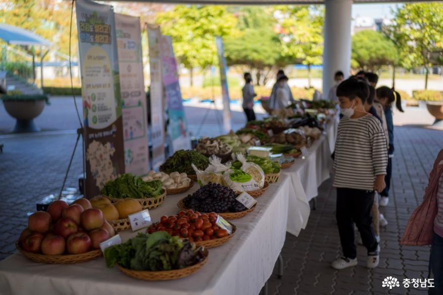'친환경 학교급식데이'…생산자-소비자 신뢰 높인다 사진