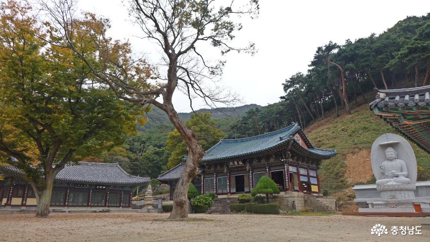 작지만 예쁜 가을을 맞고 있는 예산 향천사 사진