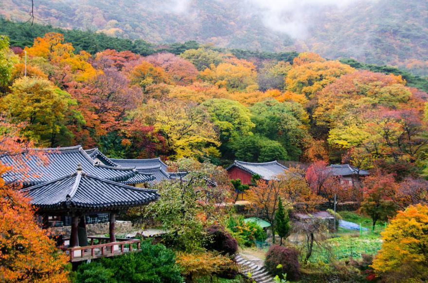 깊어가는 가을, 서산의 포근한 자연 속에서 비대면 힐링여행