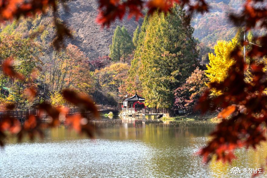 입암저수지의 가을