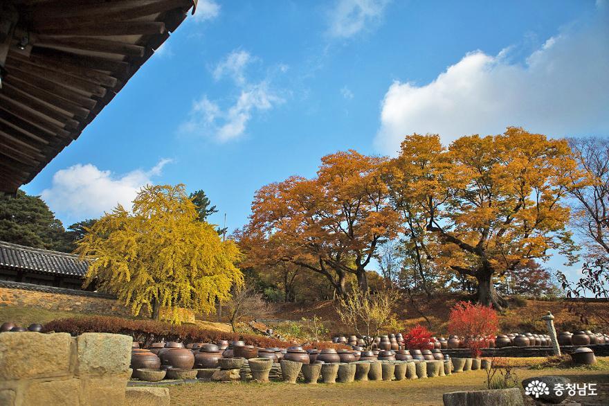 가을이 아름답게 내린 논산 명재고택