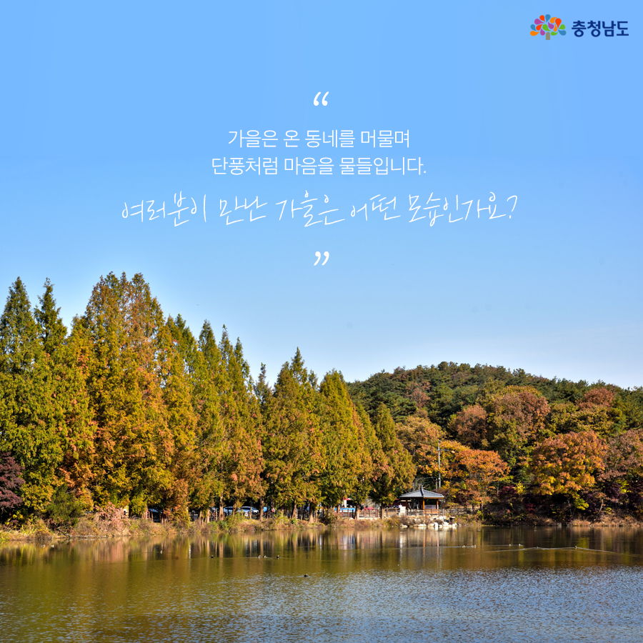 여러분이 만난 가을은 어떤 모습인가요?