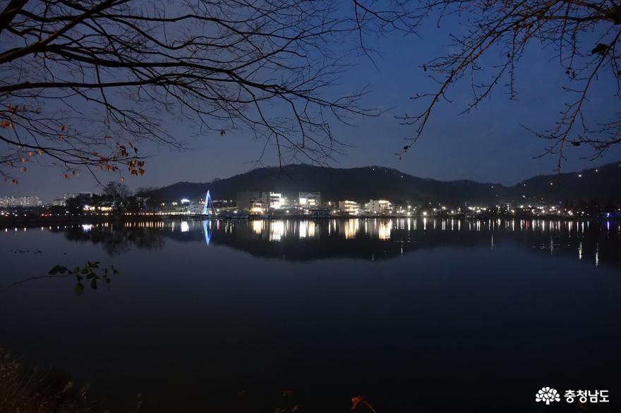 만보걷기가 내어준 신정호 밤 풍경