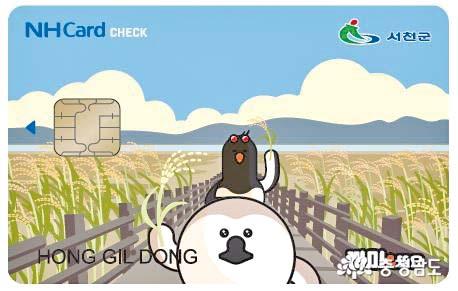 서천사랑상품권 카드 발급 시작