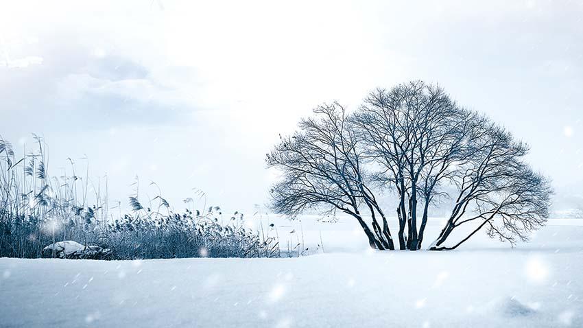 눈 오는 날의 기도