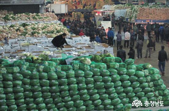 농민들은 왜, 농산물 제 값을 받지 못하나?