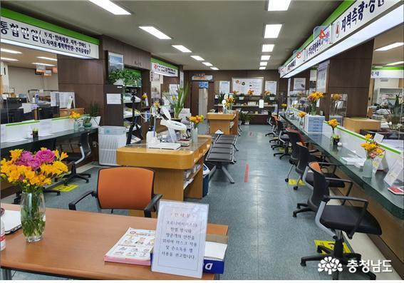 서천군 민원실, 화훼농가 살리기 동참