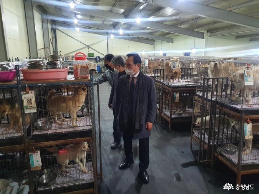 박상돈 천안시장, 유기동물보호소 현장 점검