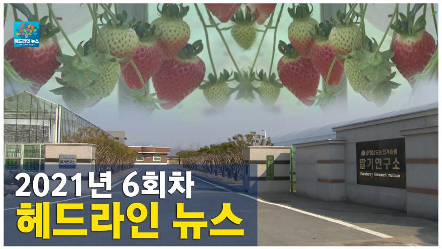 [NEWS]2021년 6회차 헤드라인뉴스