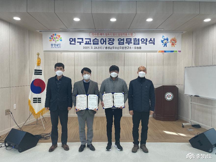 서해안산 '참조기' 양식 기술 시험 착수