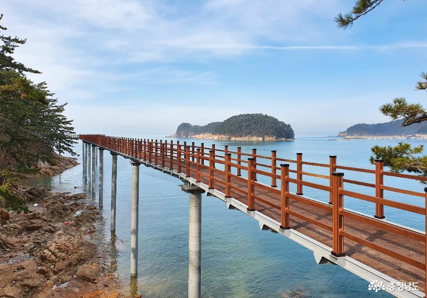 '서해바다와 송림의 환상적인 조화' 새로운 관광명소 만리포 '뭍닭섬 산책로' 뜬다!