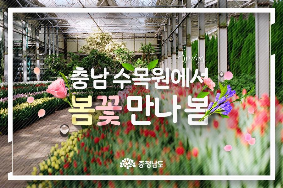 충남 수목원에서 봄꽃 만나 봄