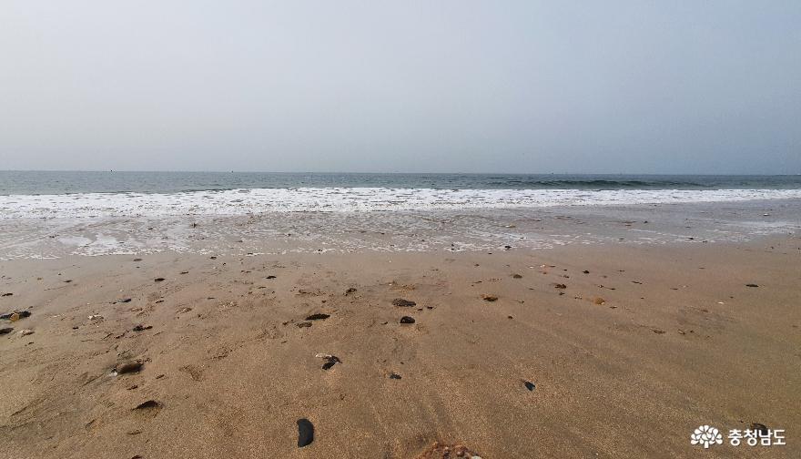 서해바다 1번지 대천해수욕장