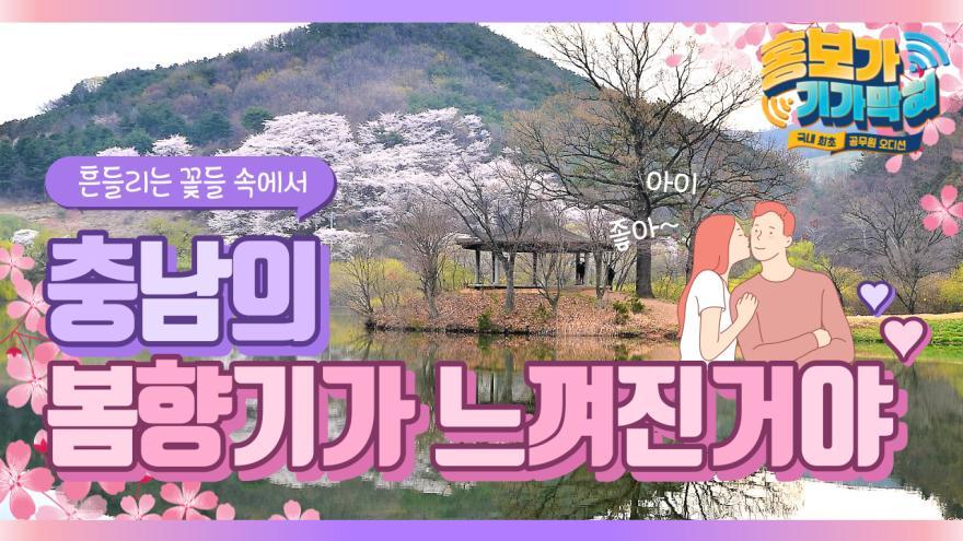 [홍보가 기가막혀 6] 랜선 꽃놀이, 화훼농가 파이팅!!