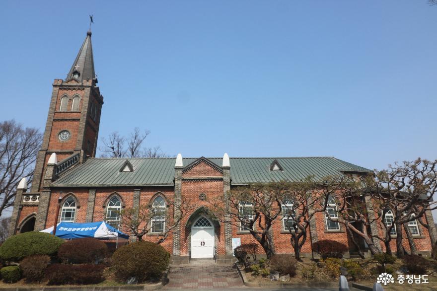하얀 목련이 몽글몽글 피어난 공주 중동성당