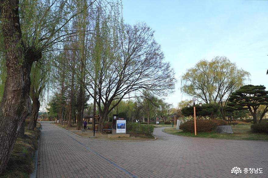 능수 버들과 함께 산책하기 좋은 천안삼거리공원