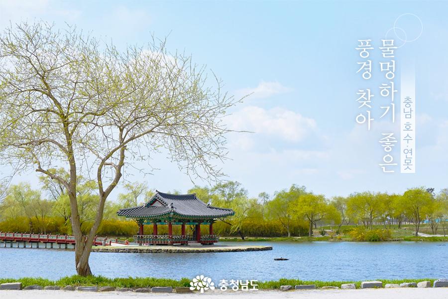 충남의 호수와 연못